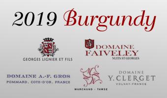 2019 Burgundy